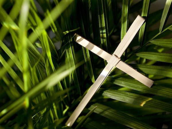 palm sunday service 2020 all saints church carmel california